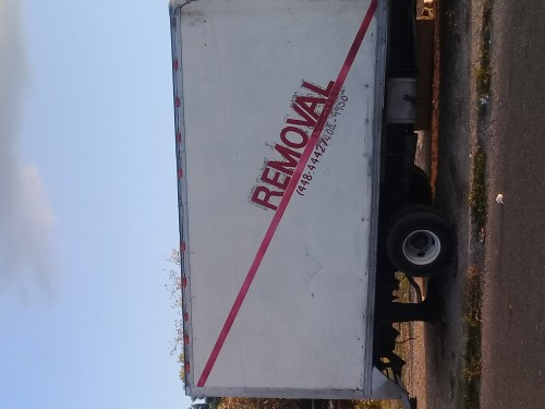 Hire And Removal Services