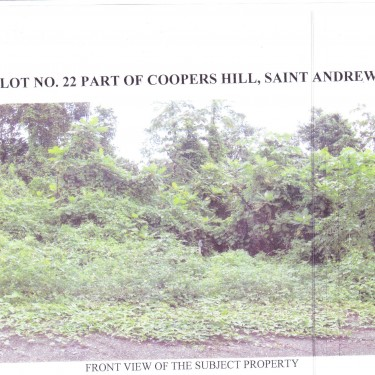 582.16-sq. Meters (6266.43-sq. Ft.) Land Coopers Hill, St Andrew