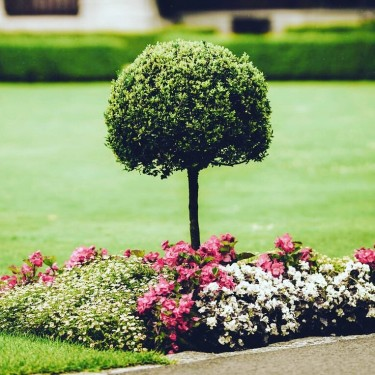 LANDSCAPING SERVICES AVAILABLE