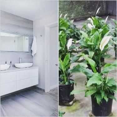 CUSTOM BUILD YOUR OWN BEAUTIFUL BATHROOM CABINET