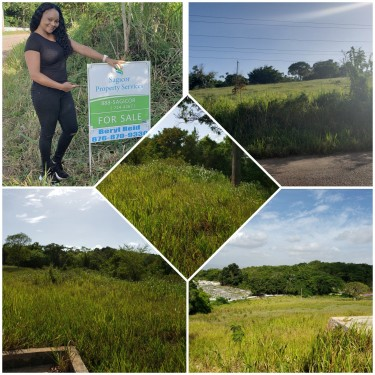 6 Acre Of Prime Land