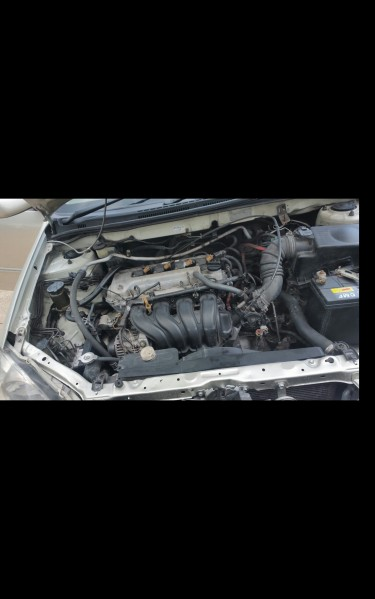 2005 Toyota Altis