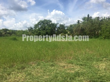 5 Acre Farm With 4 Bedroom Cottage