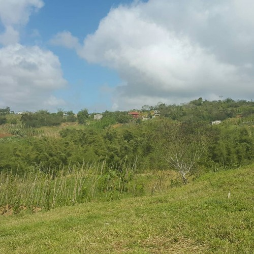 5 Acres Of Farm/residential Land Land Sunberry