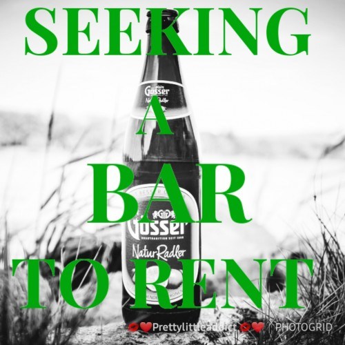 Seeking An Bar To Rent