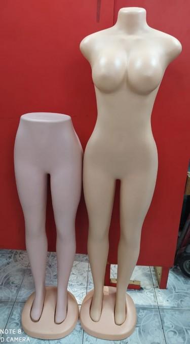 Ladies Mannequins  Women's Clothes Downtown Kingston
