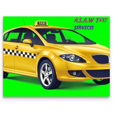 Taxi Driver With PPV License For Hackney Carriage