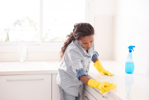 Experienced House Keeper
