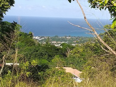 1/2 Acre In The Hills Land Mount Pleasant, Runnaway Bay