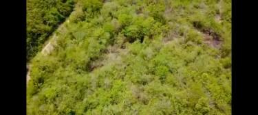 12 Acres Of Land Land Lot 6a Seven Plantation