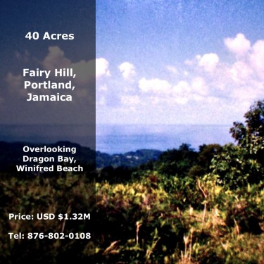 40 Acres Of Land