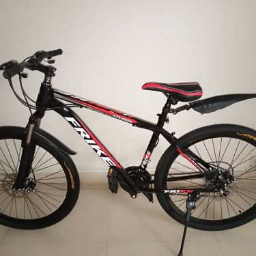 Sport Performance Bicycle