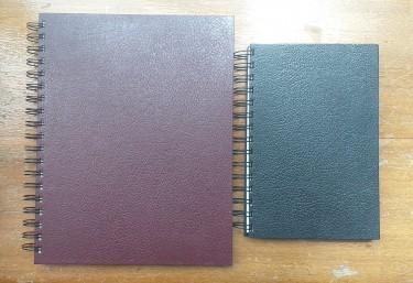 Sketchbook/Journals