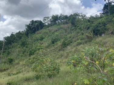 2.5 Acres Of Land
