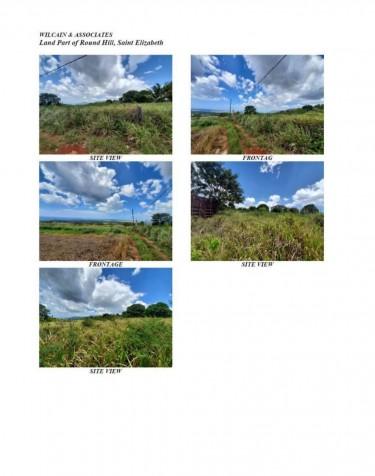 Half  Acre Of Land