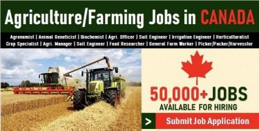 Farm Work Opportunities In Canada 1 Year Program.